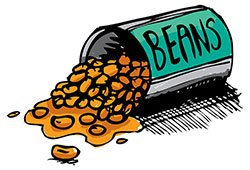 spill the beans LELB Society