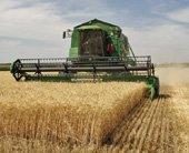 Harvest – English Flashcard for Harvest for IELTS