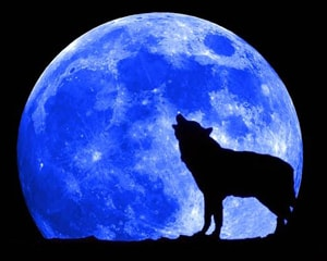 Once in a blue moon 1100 words You need to know week 26 day 3 at LELB Society with flashcards for TOEFL, IELTS & GRE