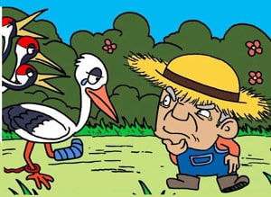 The Farmer and the Stork an Aesop's Fable to practice English at LELB Society with podcast and vocabulary practice